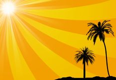 Summer tropical background. May be used as background for vacation or traveling concept Royalty Free Stock Images
