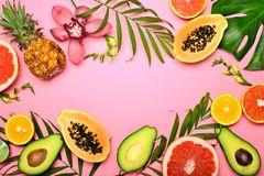 Summer tropical background stock photos