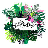 Summer tropical background with exotic bouquet Royalty Free Stock Image