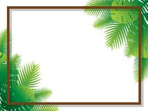 Sale banner poster design with palm leaves. Summer tropical background with exotic green palm leaves and plant Stock Photography