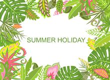 Summer tropical background with exotic leaves Stock Photography