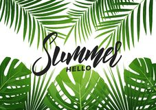 Summer. Tropical background with exotic palnts. Banner for summer sale, promotion, party events vector illustration