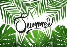 Summer. Tropical background with exotic palnts. Banner for summer sale, promotion, party events royalty free illustration