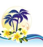 Summer tropical background with frangipani Royalty Free Stock Photo