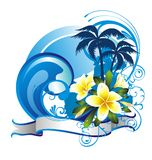 Summer tropical background with frangipani (plumer Stock Photography