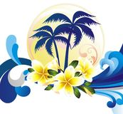 Summer tropical background with frangipani (plumer Royalty Free Stock Photos