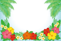 Tropical resort background. Summer tropical background. hibiscus, palm leaf and monstera Royalty Free Stock Photo
