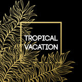 Summer tropical background of palm leaves and golden text and frame.  Vector illustration Royalty Free Stock Image