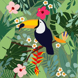 Summer tropical background. Toucan bird with palm leaves, hibiscus, heliconia and plumeria  Stock Image