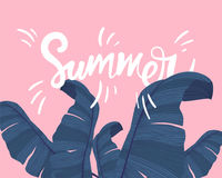 Summer tropical banner with exotic palm leaves on pink background. Monstera, palm, banana leaves. Exotic textile Royalty Free Stock Photography