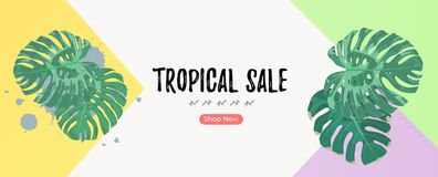 Summer tropical banner template with green palm leaves and copyspace. Summer tropical banner template with green palm leaves and copyspace royalty free illustration