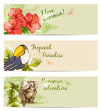 Summer tropical banners Stock Images