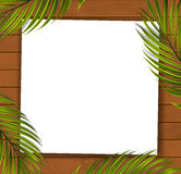 Summer Tropical Beach Background Stock Images
