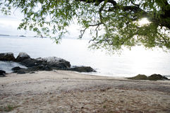 Summer tropical beach stock photos