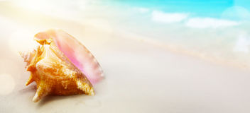 Summer tropical Beach; Peaceful vacation background Royalty Free Stock Photography