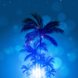 Summer Tropical Blue Background Royalty Free Stock Photo