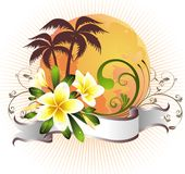 Summer tropical card with frangipani Stock Images