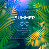 Summer tropical concept, paradise with palm leaves Stock Photos