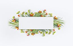 Summer tropical creative design with palm leaves and exotic flowers for banner or flyer on white. Background stock images