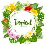 Summer tropical frame design Stock Photo