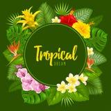 Summer tropical frame design Royalty Free Stock Photos