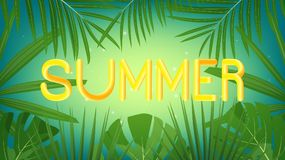 Summer. Tropical exotic palms background and fluid Summer lettering for seasonal sale, promotion, advertisement. royalty free illustration