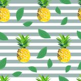 Pineapple seamless pattern. summer pattern on a stripy background. Summer tropical fruit pattern. exotic fruit hand drawn Stock Photography