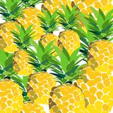 Pineapple print summer pattern on a stripy background. Summer tropical fruit pattern. exotic fruit hand drawn Stock Photos