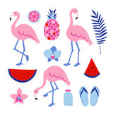 Summer tropical graphic elements. Flamingo birds. Jungle floral illustrations, palm leaves, orchid flowers, pineapple,watermelon Royalty Free Stock Photo