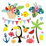 Summer tropical graphic elements. Toucan bird with lemon fruit. Jungle vector floral illustrations, palm leaves. Marine. Summer tropical graphic elements. Toucan Stock Photos
