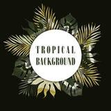 Summer tropical hawaiian background Royalty Free Stock Photo