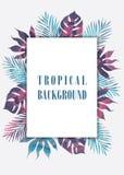 Summer tropical hawaiian background Stock Photo