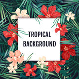 Summer tropical hawaiian background with palm tree leavs and exotic flowers Royalty Free Stock Images
