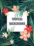 Summer tropical hawaiian background with palm tree leavs and exotic flowers Stock Photography