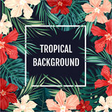 Summer tropical hawaiian background with palm tree leavs and exotic flowers Stock Photos