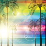 Summer tropical holiday background Stock Image