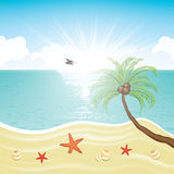 Summer tropical holiday beach background Royalty Free Stock Photos