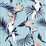 Summer tropical jungle leaves with white macaw bird saemless pat. Tern in vector suits for fashion ,fabric and all prints on lihgt blue stripes vector illustration