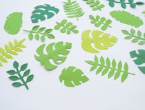 Summer Tropical leaves, plants Frame. Paper cut style. Exotic summertime. Royalty Free Stock Photography
