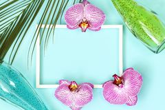 Summer tropical mockup frame with palm leaves royalty free stock photos