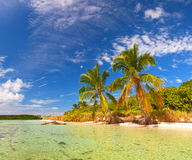 Summer at a tropical paradise in Florida Keys Royalty Free Stock Photography