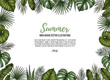Summer tropical postcard template. Frame with palm leaves monst Royalty Free Stock Images