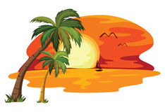 Summer tropical sunset. Summer sunset tropical landscape. vector illustration Stock Photo
