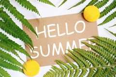 Summer tropical template for text, place for text, leaves around sticker royalty free stock photos