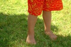 Summer Trunks. Little boy legs in the summer time Stock Image