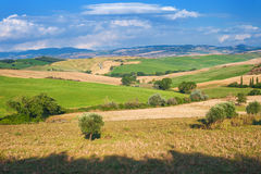 Summer Tuscan landscape, green field and blue sky Stock Images