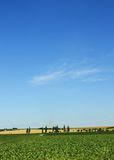Summer Tuscany landscape blue sky Stock Photography