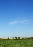 Summer Tuscany landscape blue sky Stock Photography