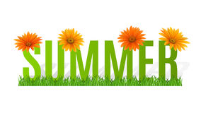 Summer Typographic Banner with flowers for design Royalty Free Stock Images