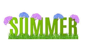 Summer Typographic Banner with flowers for design Stock Image